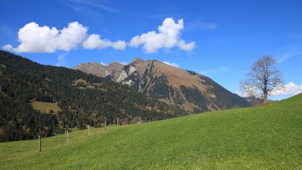 idyllic autumn landscape near gstaad