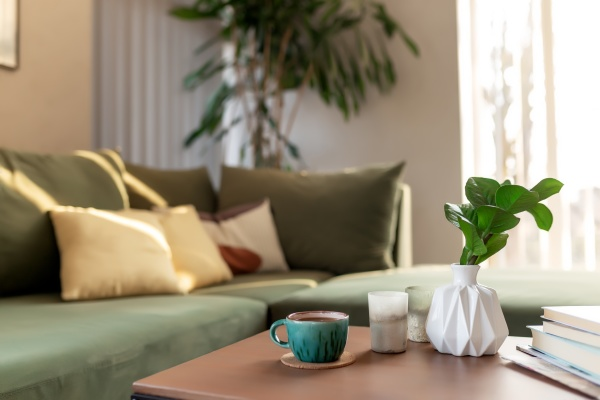 relaxing time at comfort green interior