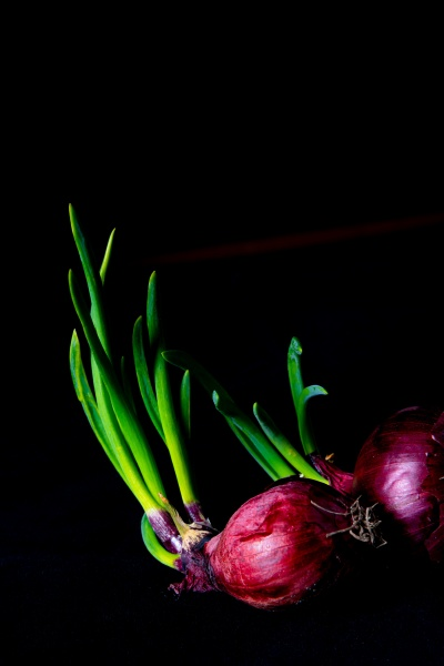 red onions with green stems