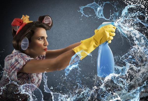 housewife cleaning spray