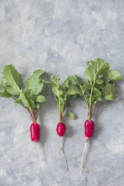 fresh raw radish flatlay