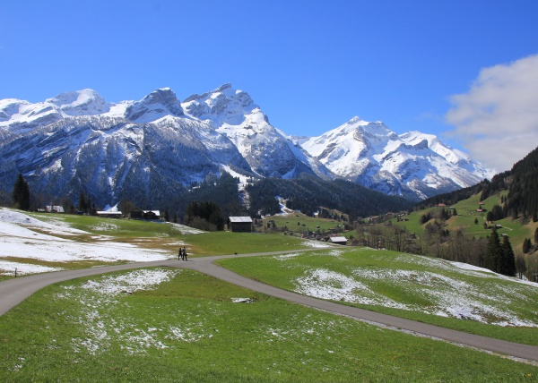 green meadow and snow covered mountains