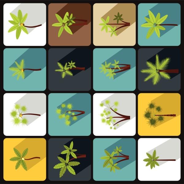 palm tree icons set flat style