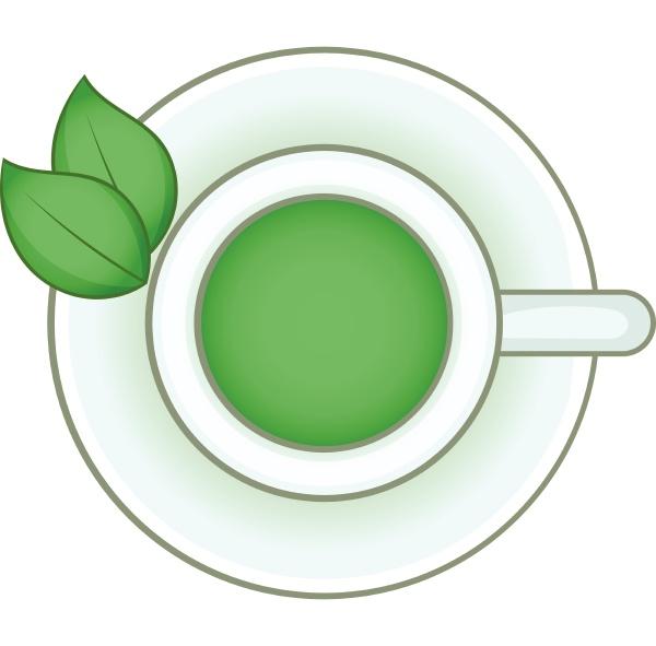 cup of green tea icon cartoon