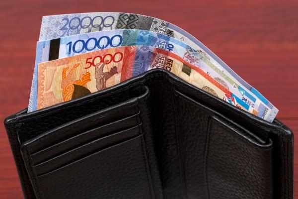 kazakhstani in the wallet