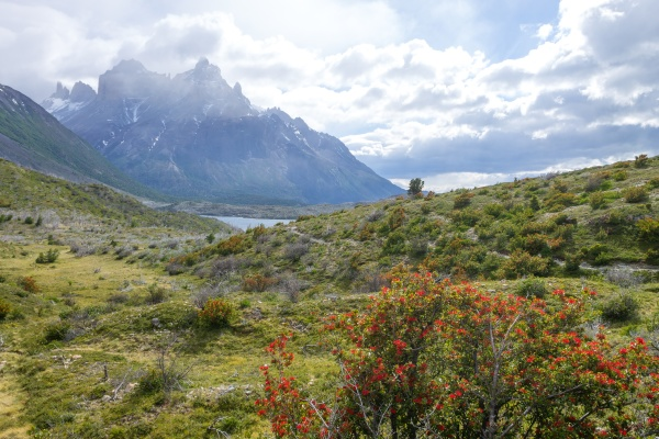 lake pehoe view torres del paine