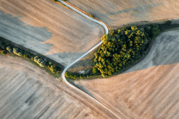 abstract aerial view of mowed field
