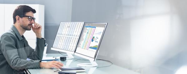 auditor spreadsheet report