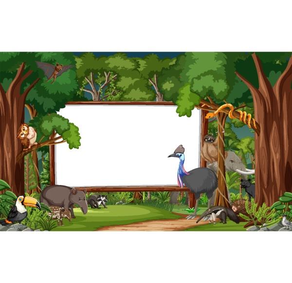 blank banner in the rainforest scene
