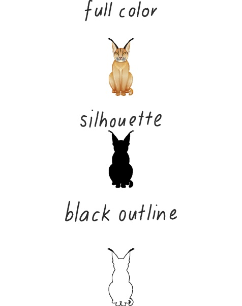 set of caracal in color silhouette