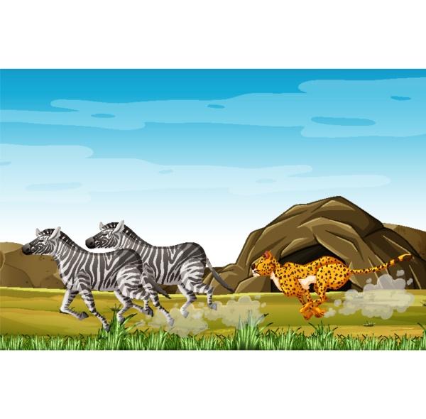 leopard hunting zebras in cartoon character