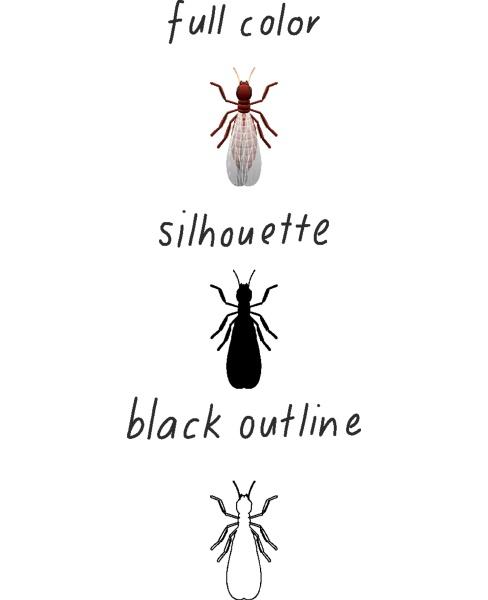 set of termite in color silhouette