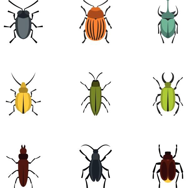 beetle icons set flat style