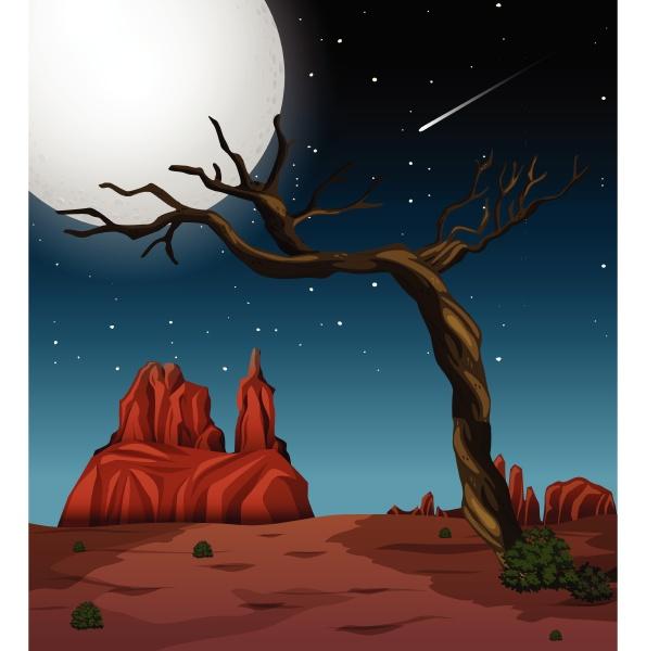 a night desert landscape