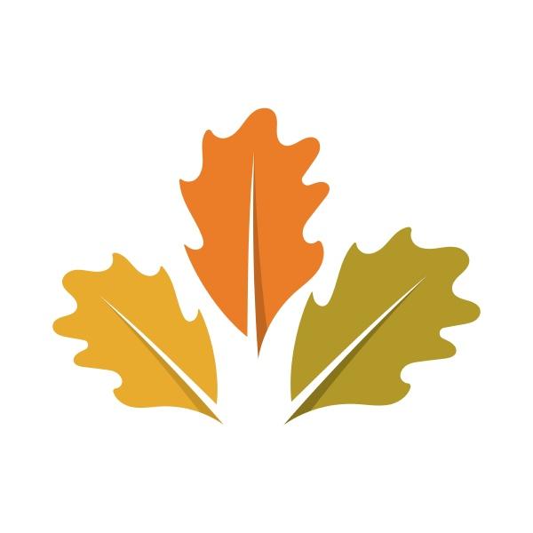 autumn leaf logo template vector