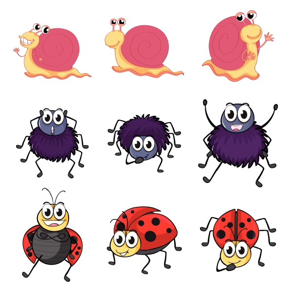 a spider a ladybug and
