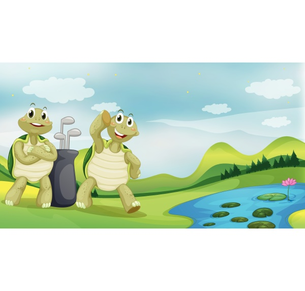 two turtles near the river