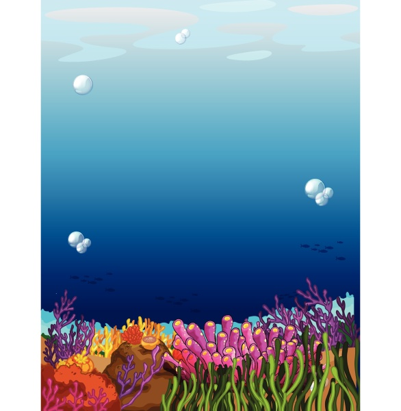 a beautiful underwater scene