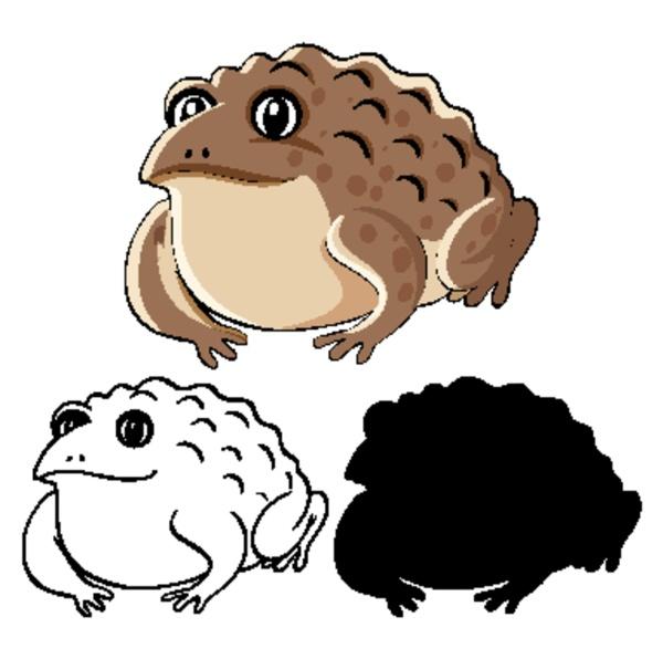 set of toad cartoon