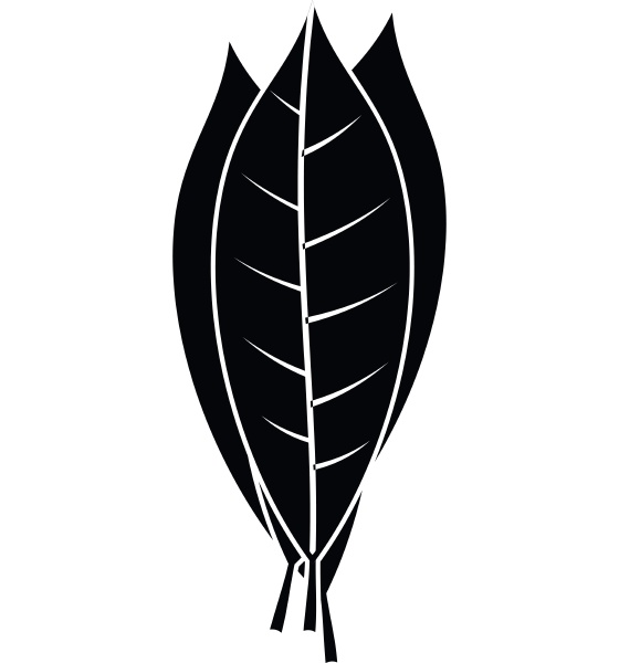 culinary bay leaves icon simple style
