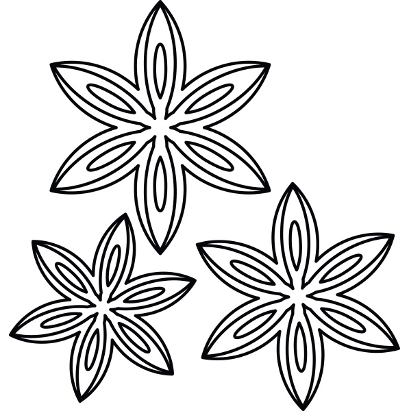 anise icon outline style