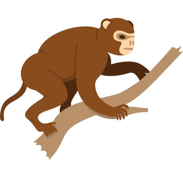 monkey sitting on a branch icon