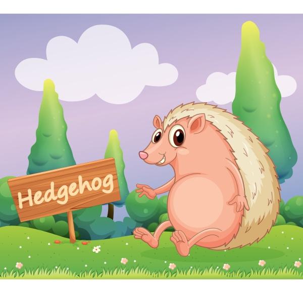 a hedgehog beside a wooden signage