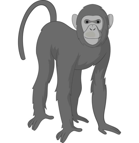 bonobo monkey icon monochrome