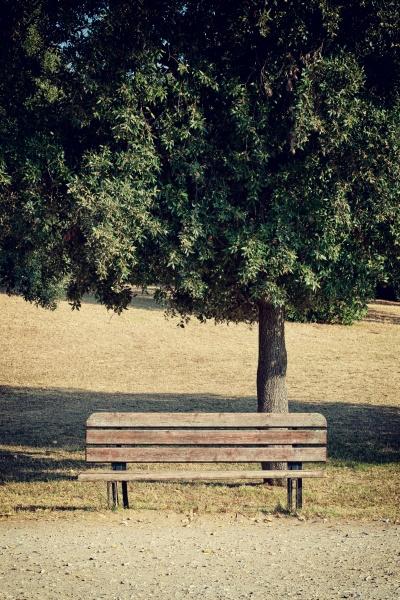 empty dark wooden bench in the