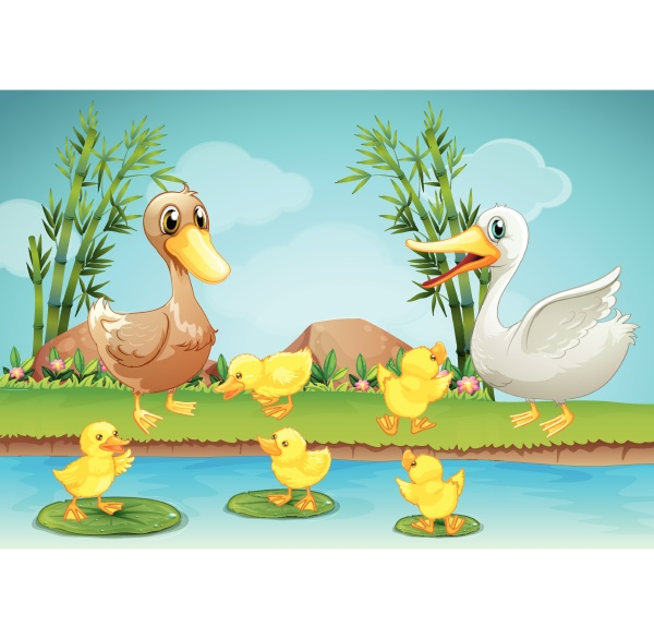 mother duck and ducklings at the