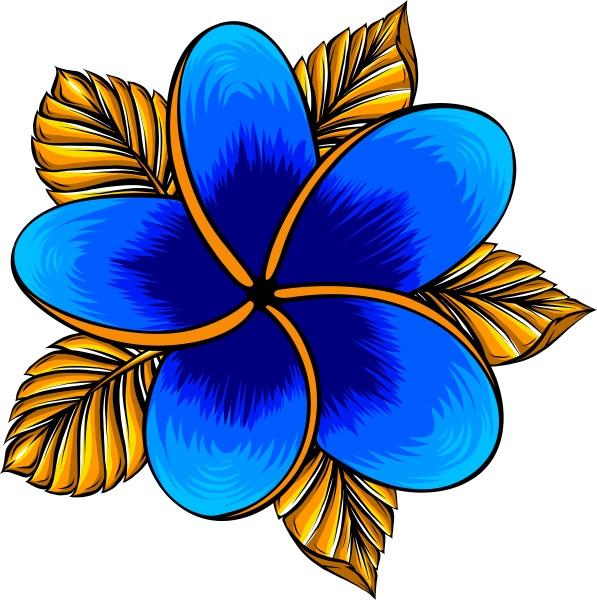 vector illustration of frangipani flower isolated