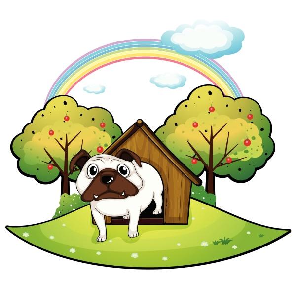 a dog inside a doghouse