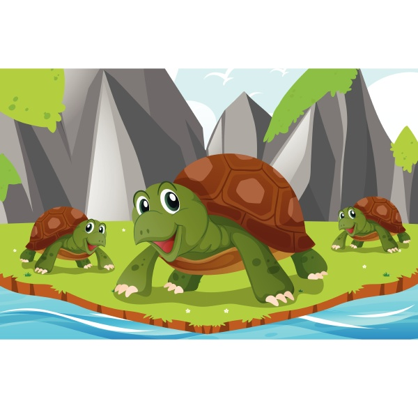 turtles living by the river