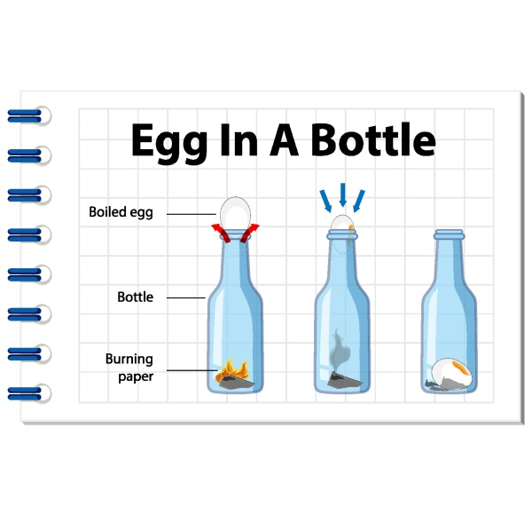 science experiment with egg in a