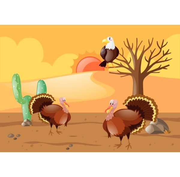 turkeys and eagle in desert