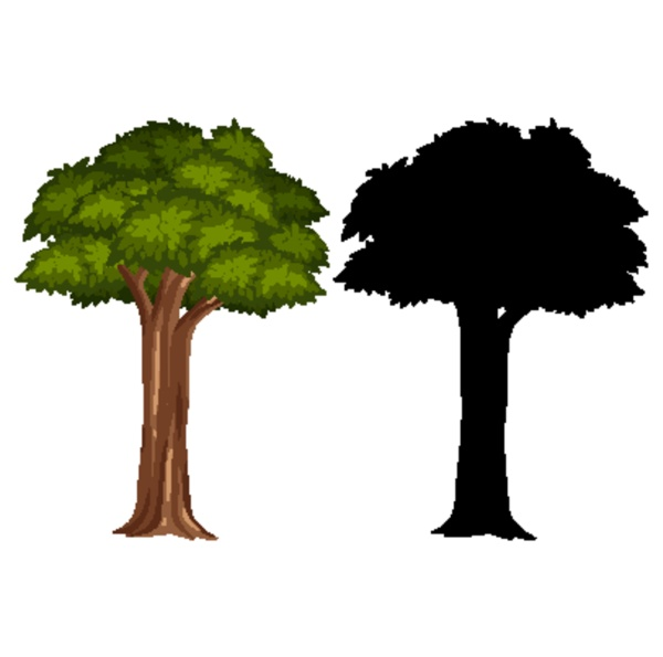 silhouette pictures of big tree on