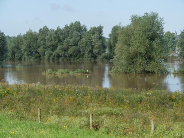 the river rhine near bislich in