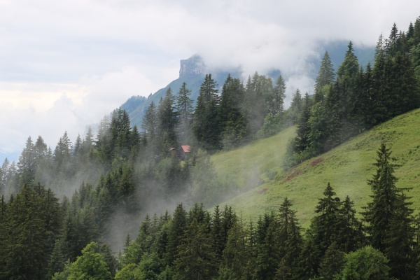 fog creeping up a mountain side