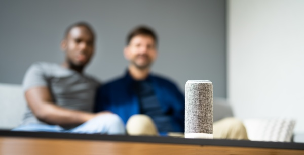 smart speaker and wireless voice assistant