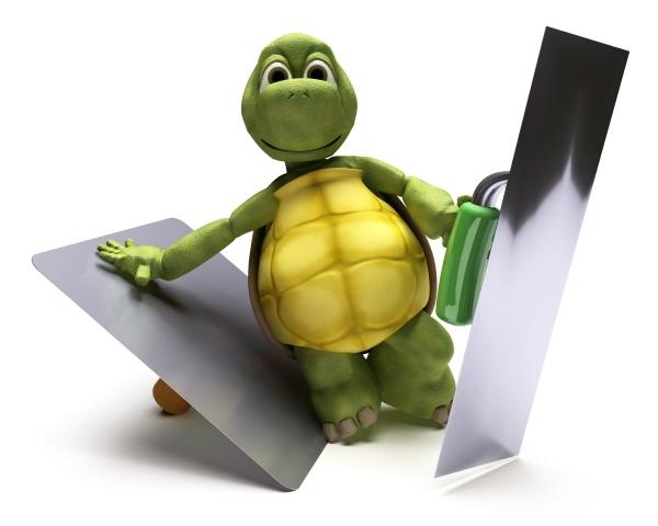 tortoise with plastering tools