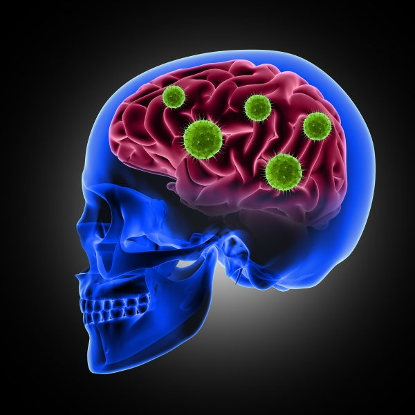 3d male skull with virus cells