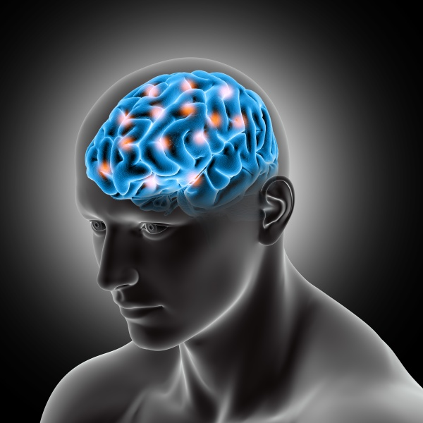 3d male medical figure showing brain