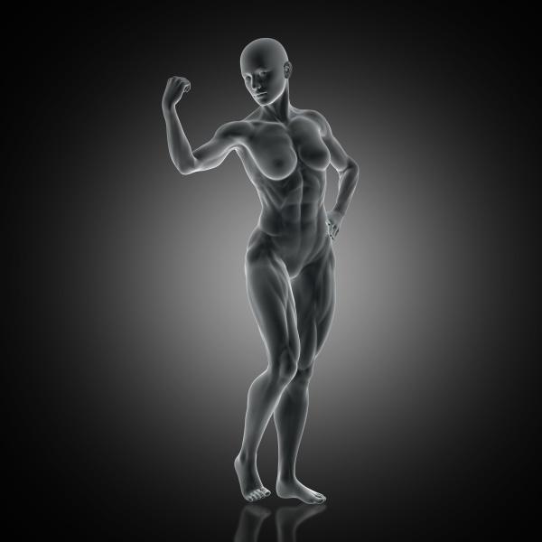 3d muscular female flexing arm muscle