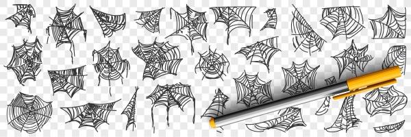 spider web patterns doodle set