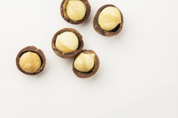 macadamia nuts in a school isolated