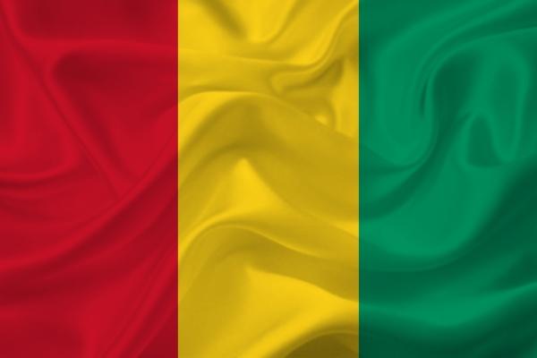 3d flag of guinea on fabric