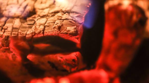 beautiful red and orange hot burning
