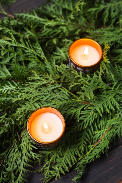 christmas composition with fir branches and