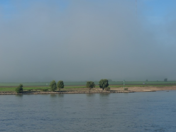 morning time a the river rhine