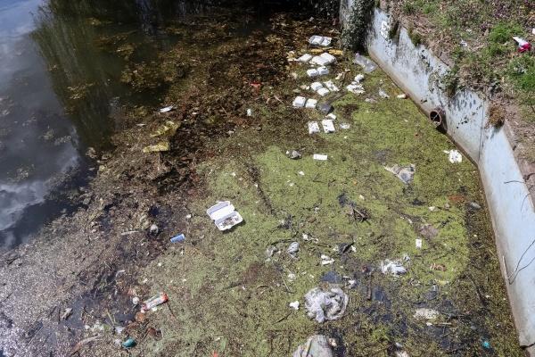 environmental pollution found at a lake